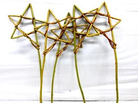 Willow Wands