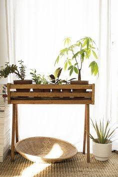 13 Plant Stand