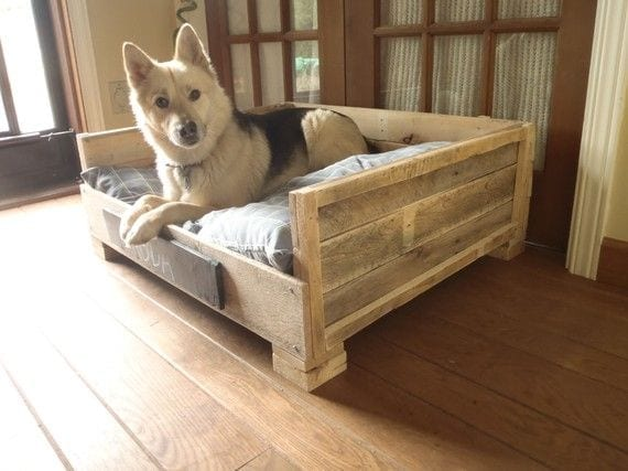 Comfortable Sofa For Dogs