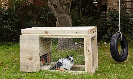 The Complete Tutorial For Building The Rabbit Hutch In One Website