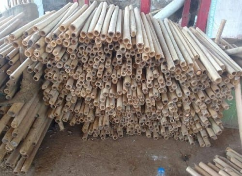Look For The Ideal Bamboo