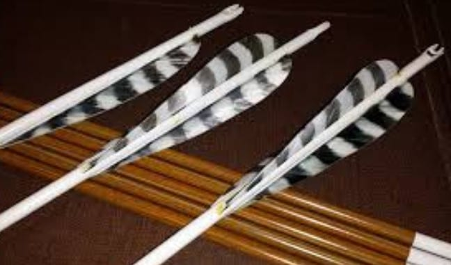 Make Fletchings From Feathers