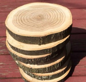Place The Slices Of Wood In The Oven 1