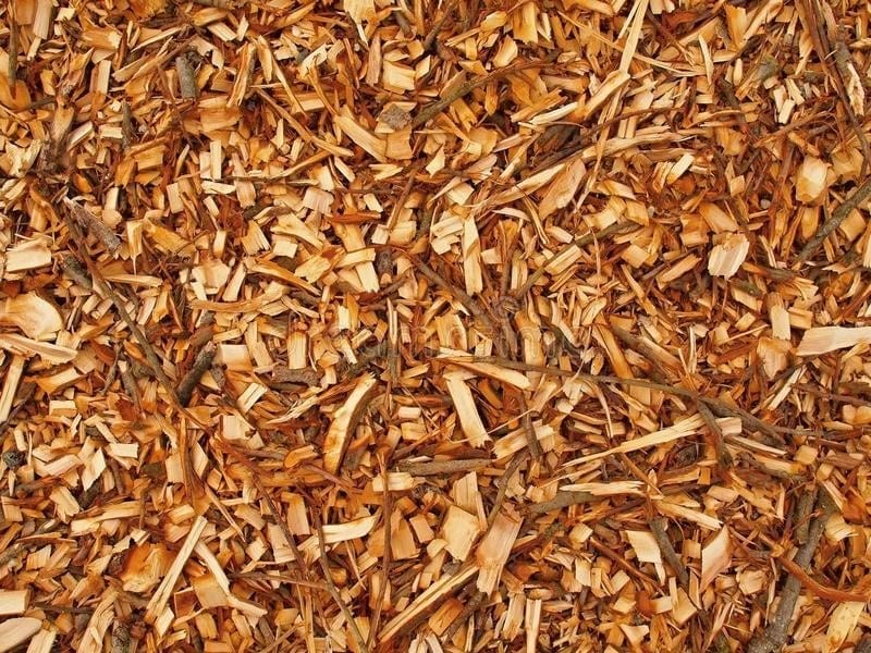 What To Do With Fresh Wood Chips