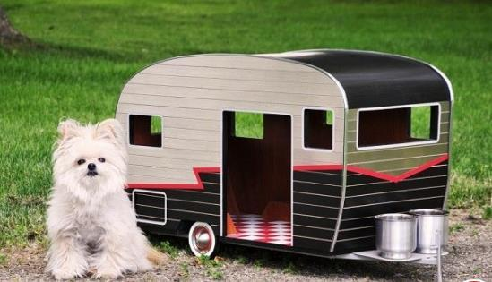 Adorable Puppy Camper Dog House