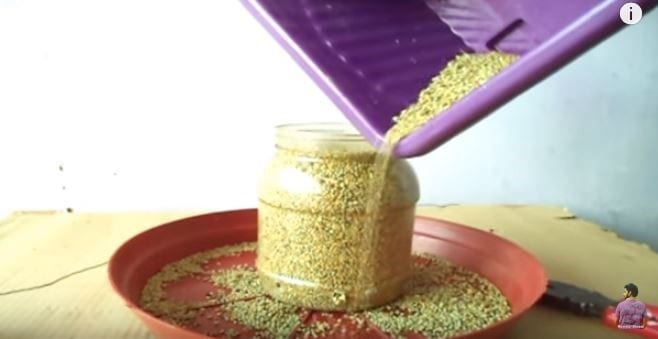 Diy Bird Feeder From Recycled Materials