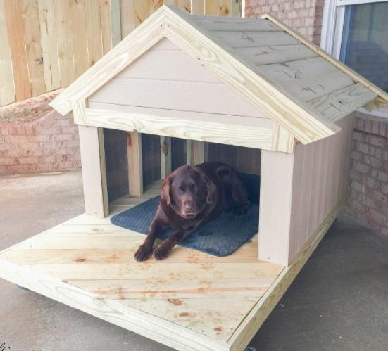 Dog House With A Beautiful Porch