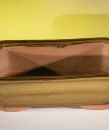 Tan Ceramic Bonsai Pot - Rectangle 10 x 8 x 3