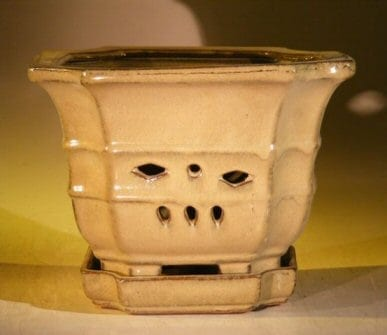 Mustard Color Orchid Pot with Attached Tray 7.0 x 6.5 Tall