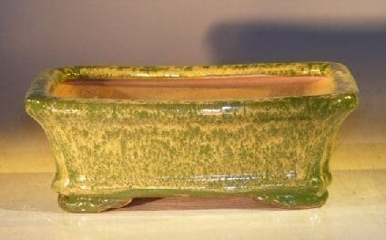 Woodlawn Green Ceramic Bonsai Pot - Rectangle 7.0 x 5.5 x 2.4