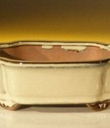 Beige Ceramic Bonsai Pot #2 - Rectangle 6.125 x 5.0 x 2.125