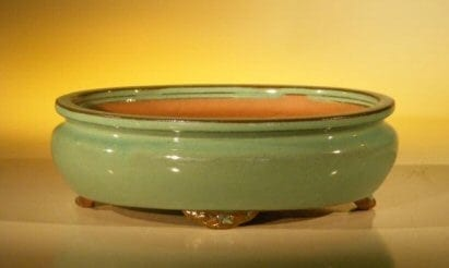 Green Ceramic Bonsai Pot - Oval 10 x 8 x 3.125