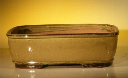 Mustard Color Ceramic Bonsai Pot - Rectangle 12.0 x 9.5 x 3.375