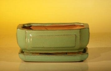 Light Green Ceramic Bonsai Pot - Rectangle Professional Series with Attached Humidity/Drip tray 6.37 x 4.75 x 2.625