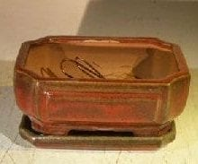 Parisian Red Ceramic Bonsai Pot - Rectangle Professional Series with Attached Humidity/Drip tray 6.37 x 4.75 x 2.625