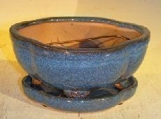 Blue Ceramic Bonsai Pot- Oval Lotus Shape Professional Series with Attached Humidity/Drip Tray 6.37 x 4.75 x 2.625