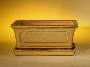Ceramic Bonsai Pot With Attached Humidity/Drip tray-Professional Series Rectangle 8.5 x 6.5 x 3.5