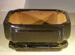 Black Ceramic Bonsai Pot- Rectangle Professional Series With Attached Humidity/Drip Tray 8.5 x 6.75 x 4.0