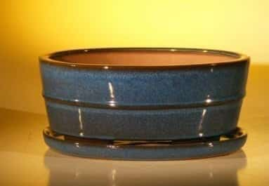 Blue Ceramic Bonsai Pot- Oval Professional Series with Attached Humidity/Drip tray 10.0 x 7.5 x 4.5