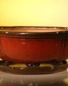 Parisian Red Ceramic Bonsai Pot - Oval Lotus Shaped Professional Series With Attached Humidity/Drip tray 10.75 x 8.5 x 4.125