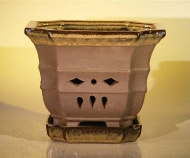 Ceramic Orchid Pot - 7.625 x 6.125 Hexagon With Matching Attached Saucer