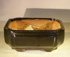 Black Ceramic Bonsai Pot #2 - Rectangle Professional Series 8.25 x 6.25 x 4.0