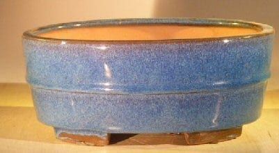 Blue Ceramic Bonsai Pot - Oval Professional Series 10 x 8 x 4