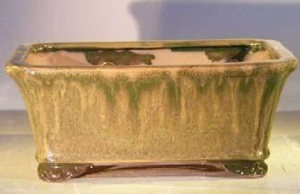 Green Ceramic Bonsai Pot - Rectangle Professional Series 10 x 8 x 4