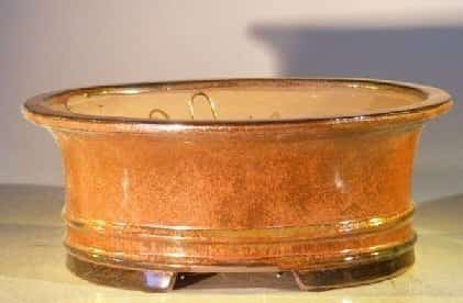Aztec Orange Ceramic Bonsai Pot - Oval Professional Series 10 x 8 x 4
