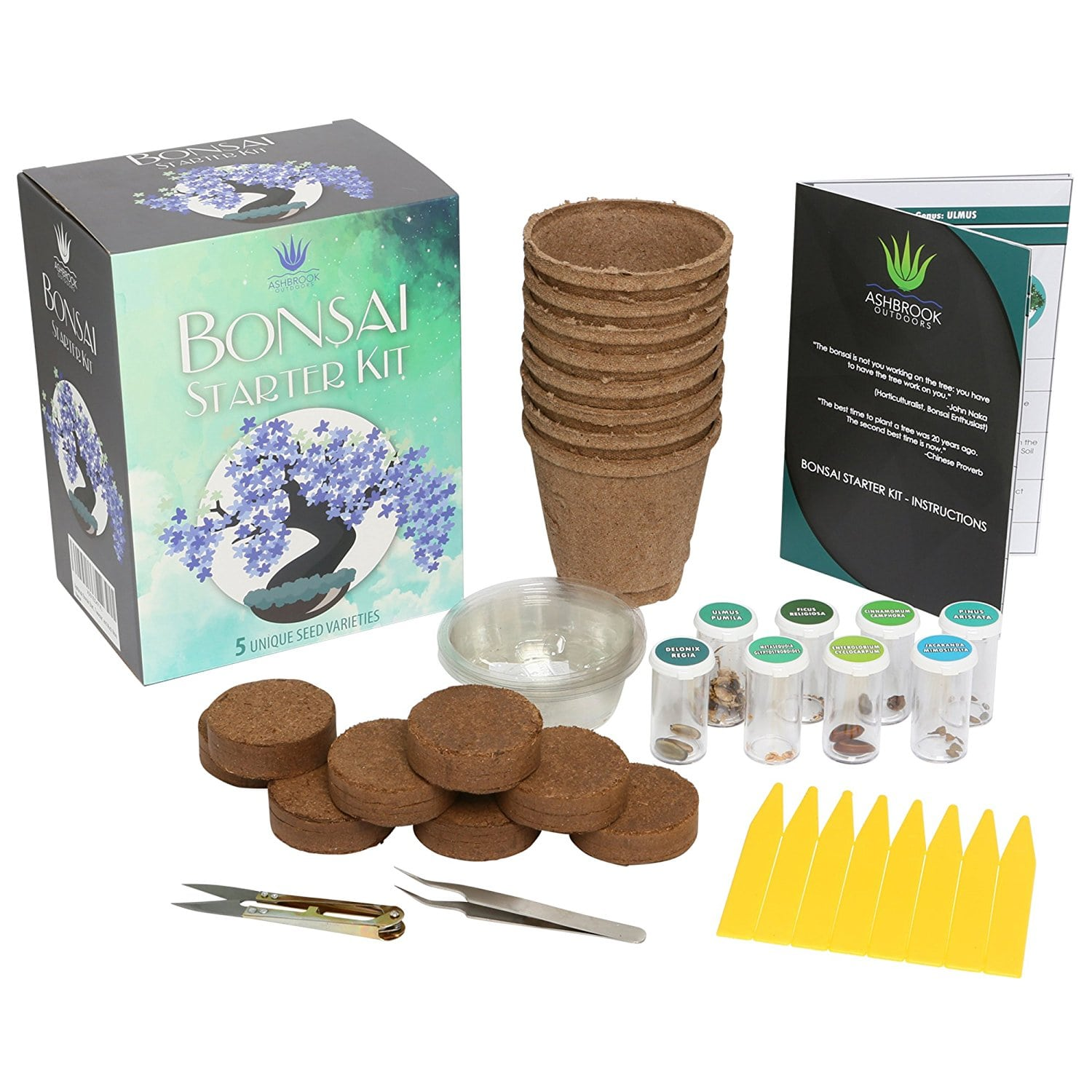 Best Bonsai Starter Kits Bonsai Tree Gardener